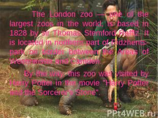 The London zoo — one of the largest zoos in the world, is based in 1828 by sir T