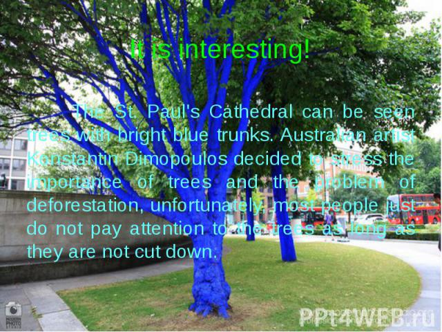 It is interesting! The St. Paul's Cathedral can be seen trees with bright blue trunks. Australian artist Konstantin Dimopoulos decided to stress the importance of trees and the problem of deforestation, unfortunately, most people just do not pay att…
