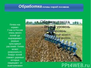 Почва нас кормит.У нас в России очень много полей где выращивают разные культурн