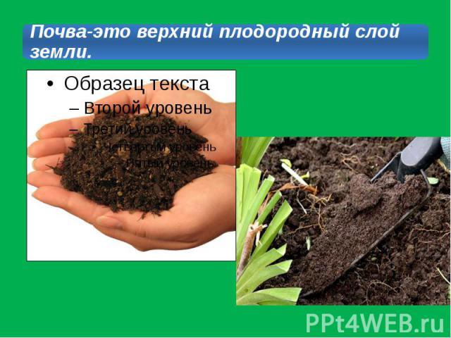 Почва-это верхний плодородный слой земли.