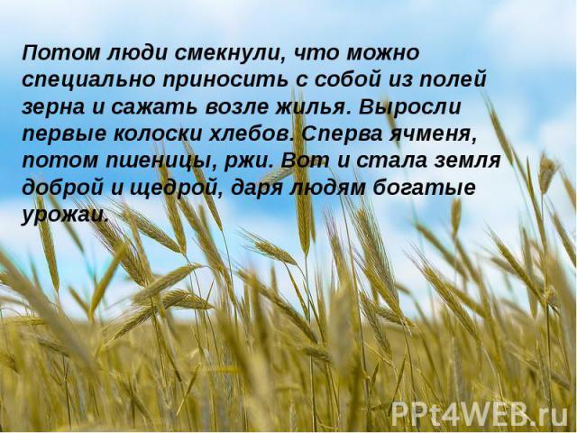 Потом люди смекнули, что можно специально приносить с собой из полей зерна и сажать возле жилья. Выросли первые колоски хлебов. Сперва ячменя, потом пшеницы, ржи. Вот и стала земля доброй и щедрой, даря людям богатые урожаи.