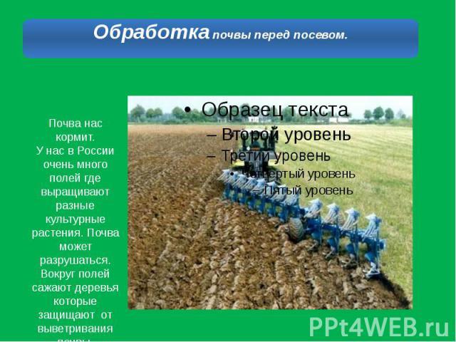 Почва нас кормит.У нас в России очень много полей где выращивают разные культурные растения. Почва может разрушаться. Вокруг полей сажают деревья которые защищают от выветривания почвы.