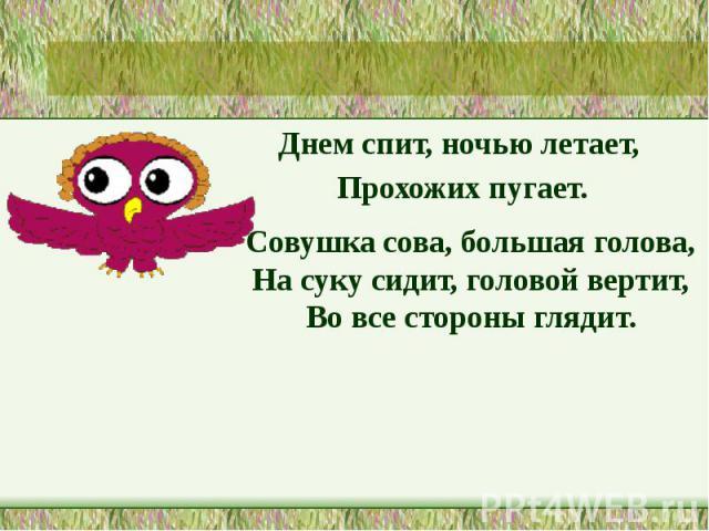 Днем спит, ночью летает, Днем спит, ночью летает, Прохожих пугает.