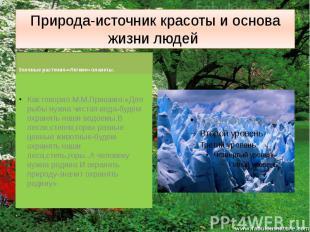 Природа-источник красоты и основа жизни людей Зелёные растения-«Легкие» планеты.