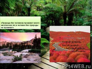Вывод: «Природа без человека проживет много миллионов лет,а человек без природы
