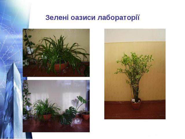 Зелені оазиси лабораторії