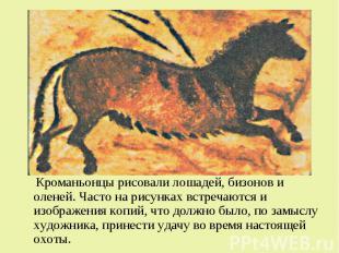 Кроманьонцы рисовали лошадей, бизонов и оленей. Часто на рисунках встречаются и