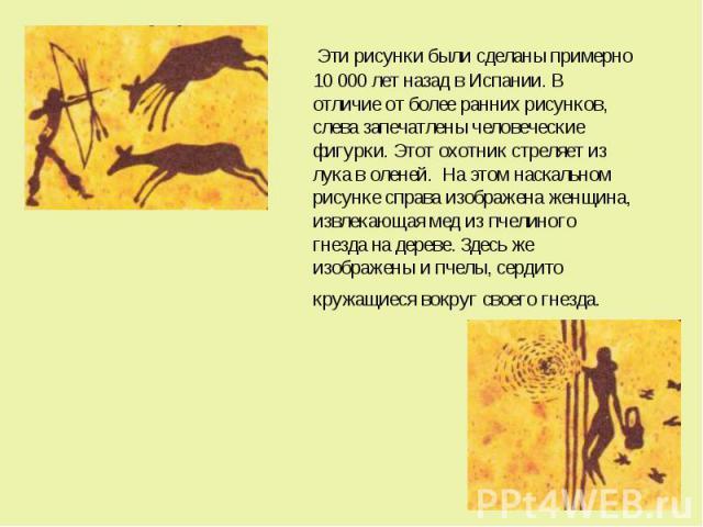 Эти рисунки были сделаны примерно 10 000 лет назад в Испании. В отличие от более ранних рисунков, слева запечатлены человеческие фигурки. Этот охотник стреляет из лука в оленей. На этом наскальном рисунке справа изображена женщина, извлекающая…