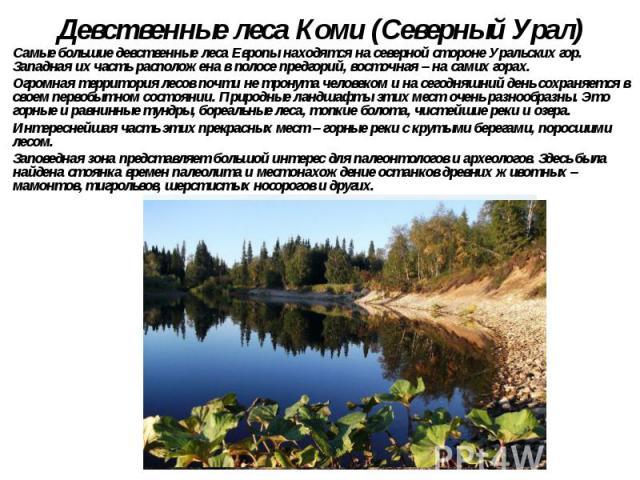 Девственные леса Коми (Северный Урал) Самые большие девственные леса Европы находятся на северной стороне Уральских гор. Западная их часть расположена в полосе предгорий, восточная – на самих горах. Огромная территория лесов почти не тронута ч…
