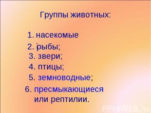 Группы животных: насекомые;2. рыбы;3. звери;4. птицы;5. земноводные;6. пресмыкаю