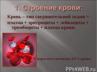 1. Строение крови: Кровь – тип соединительной ткани = плазма + эритроциты + лейк