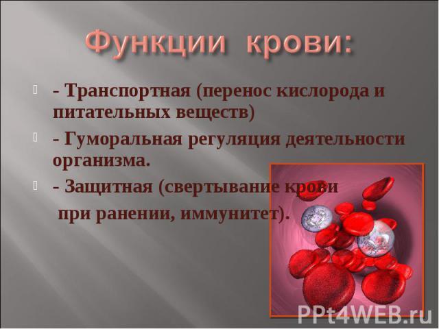 Функции крови: - Транспортная (перенос кислорода и питательных веществ)- Гуморальная регуляция деятельности организма.- Защитная (свертывание крови при ранении, иммунитет).