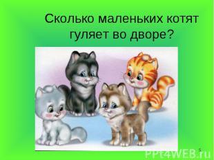 Сколько маленьких котят гуляет во дворе?