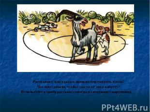 Расскажите, как удалось щенкам перехитрить козла? Что они сделали, чтобы спасти