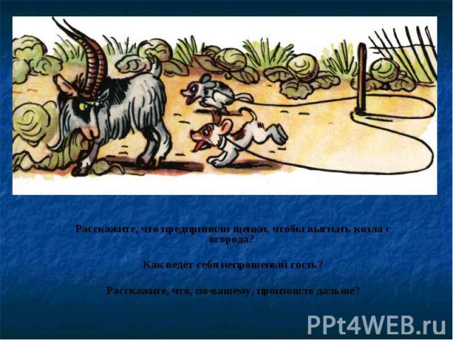 Расскажите, что предприняли щенки, чтобы выгнать козла с огорода? Как ведёт себя непрошеный гость?Расскажите, что, по-вашему, произошло дальше?