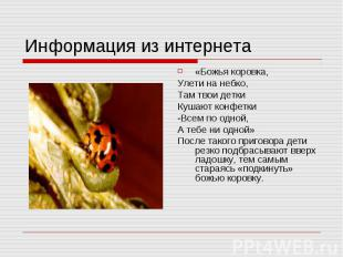 Информация из интернета «Божья коровка,Улети на небко,Там твои деткиКушают конфе