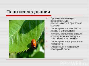 План исследования Прочитать книги про насекомых, где рассказывается про божью ко