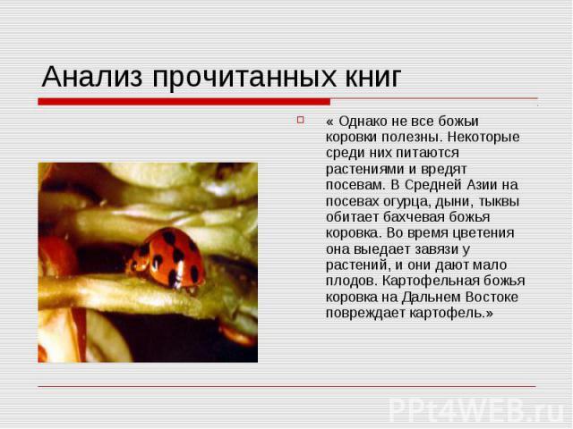 Анализ прочитанных книг « Однако не все божьи коровки полезны. Некоторые среди них питаются растениями и вредят посевам. В Средней Азии на посевах огурца, дыни, тыквы обитает бахчевая божья коровка. Во время цветения она выедает завязи у растений, и…