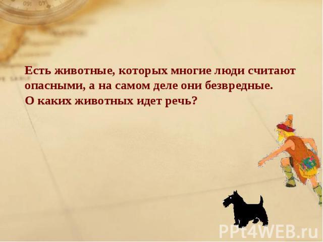Есть животные, которых многие люди считают опасными, а на самом деле они безвредные.О каких животных идет речь?