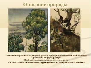 Описание природы Опишите изображённые на рисунках деревья, предварительно состав