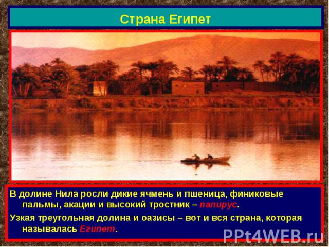 Страна Египет В долине Нила росли дикие ячмень и пшеница, финиковые пальмы, акации и высокий тростник – папирус.Узкая треугольная долина и оазисы – вот и вся страна, которая называлась Египет.
