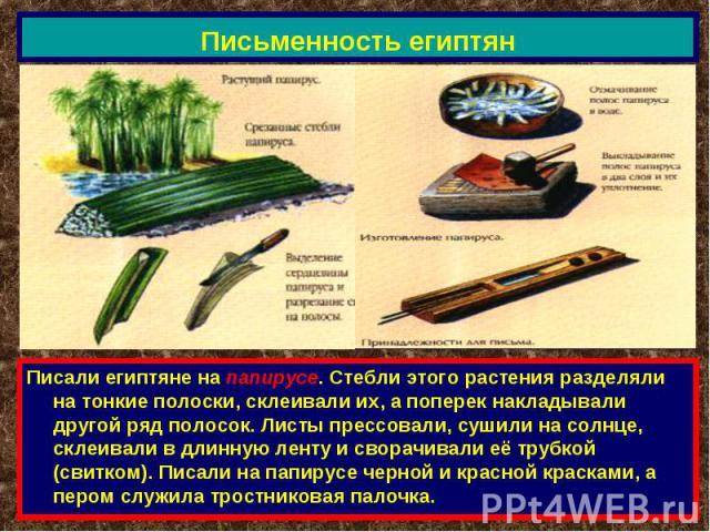 Письменность египтян Писали египтяне на папирусе. Стебли этого растения разделяли на тонкие полоски, склеивали их, а поперек накладывали другой ряд полосок. Листы прессовали, сушили на солнце, склеивали в длинную ленту и сворачивали её трубкой (свит…