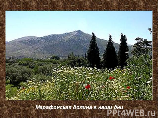 Марафонская долина в наши дни