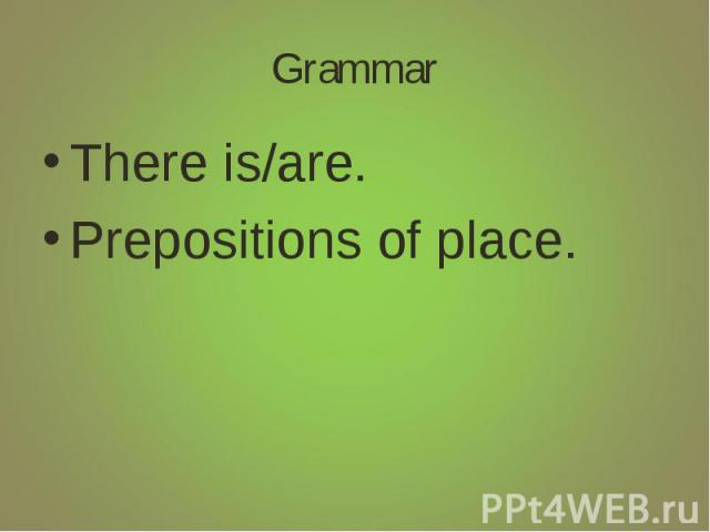 Grammar There is/are.Prepositions of place.