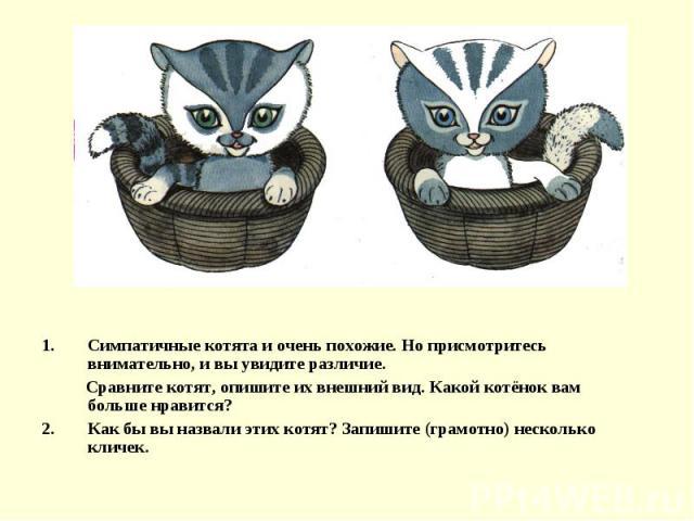 Симпатичные котята и очень похожие. Но присмотритесь внимательно, и вы увидите различие. Сравните котят, опишите их внешний вид. Какой котёнок вам больше нравится?Как бы вы назвали этих котят? Запишите (грамотно) несколько кличек.