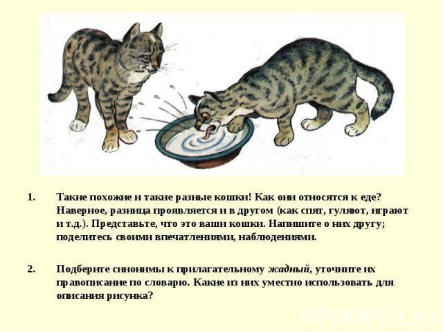 Такие похожие и такие разные кошки! Как они относятся к еде? Наверное, разница проявляется и в другом (как спят, гуляют, играют и т.д.). Представьте, что это ваши кошки. Напишите о них другу; поделитесь своими впечатлениями, наблюдениями.Подберите с…
