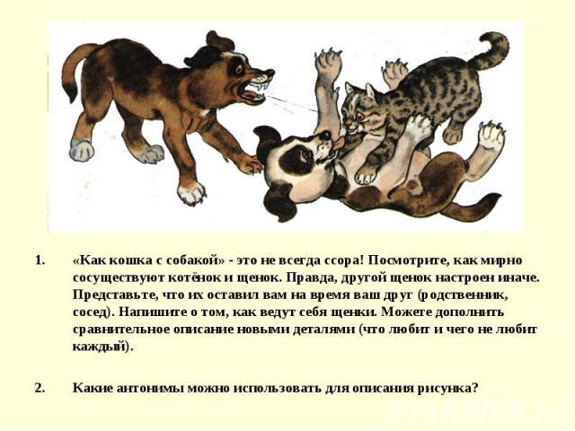 «Как кошка с собакой» - это не всегда ссора! Посмотрите, как мирно сосуществуют котёнок и щенок. Правда, другой щенок настроен иначе. Представьте, что их оставил вам на время ваш друг (родственник, сосед). Напишите о том, как ведут себя щенки. Может…