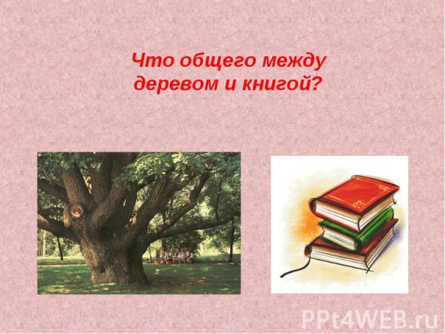 Что общего между деревом и книгой?