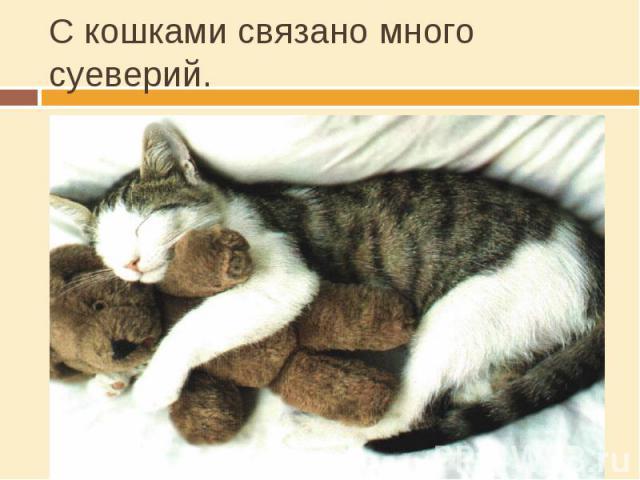 С кошками связано много суеверий. Веками в Европе кошек замуровывали в стены домов с крысой во рту. Зачем?Для отпугивания крыс и другой нечистиВо время грозы чёрного кота выбрасывали за дверь. Зачем?Считали, что они притягивают молниюСчиталось, если…