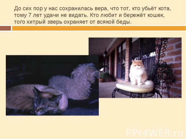 До сих пор у нас сохранилась вера, что тот, кто убьёт кота, тому 7 лет удачи не видать. Кто любит и бережёт кошек, того хитрый зверь охраняет от всякой беды.