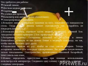 Что требуется для работы:Свежий лимон;Жесткая медная проволока;Скрепки;Кусачки д