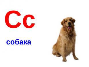Сссобака