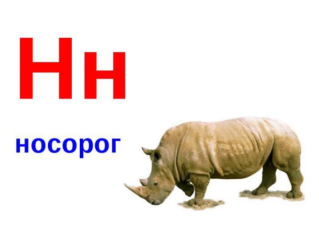 Ннносорог