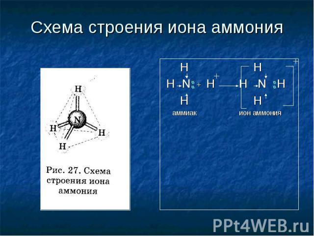 Схема строения иона аммония H H H N + H H N H H H аммиак ион аммония