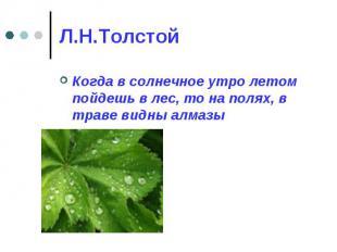Л.Н.Толстой Когда в солнечное утро летом пойдешь в лес, то на полях, в траве вид