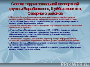 Состав территориальной экспертной группы Барабинского, Куйбышевского, Северного