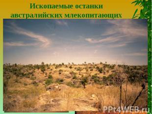 Ископаемые останки австралийских млекопитающихГеографические координаты - 19°ю.ш