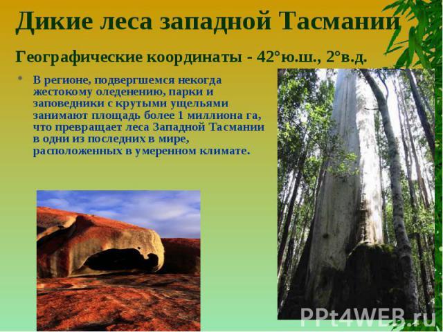 Дикие леса западной ТасманииГеографические координаты - 42°ю.ш., 2°в.д. В регионе, подвергшемся некогда жестокому оледенению, парки и заповедники с крутыми ущельями занимают площадь более 1 миллиона га, что превращает леса Западной Тасмании в одни и…