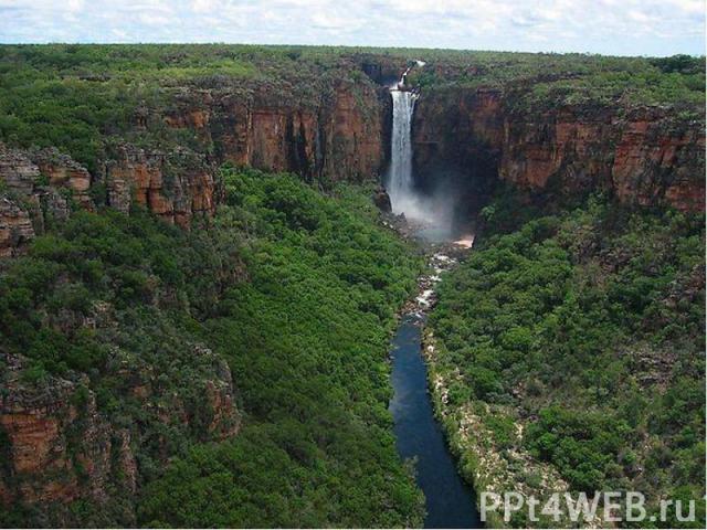 Национальный парк Какаду – уникальный образец комплекса экосистем, включая приливно – отливные зоны, поймы, низменности и плато, где обитает множество редких или эндемичных видов растений и животных.