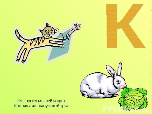Кот ловил мышей и крыс.Кролик лист капустный грыз.