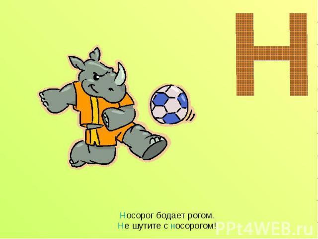 Носорог бодает рогом.Не шутите с носорогом!