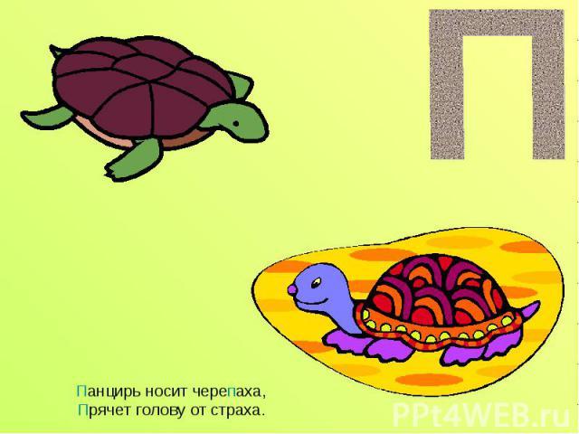 Панцирь носит черепаха,Прячет голову от страха.