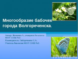 Многообразие бабочекгорода Волгореченска. Автор: Жочкина А. учащаяся 9а класса М