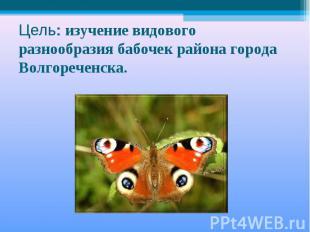 Цель: изучение видового разнообразия бабочек района города Волгореченска.