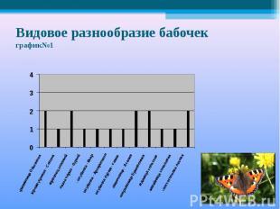 Видовое разнообразие бабочекграфик№1