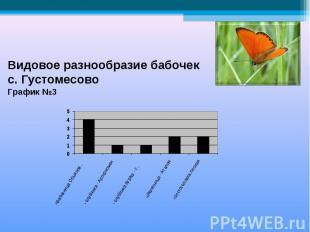 Видовое разнообразие бабочек с. ГустомесовоГрафик №3